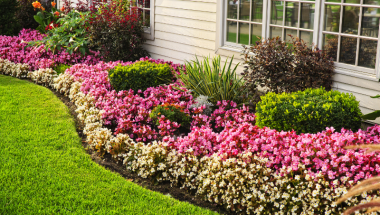 5 Simple Landscaping Tips for Model Homes