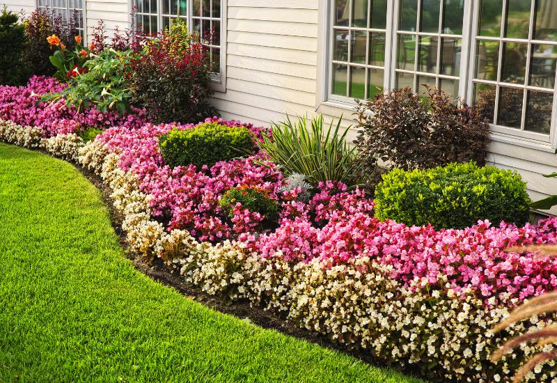 landscaping tips for model homes - flowers