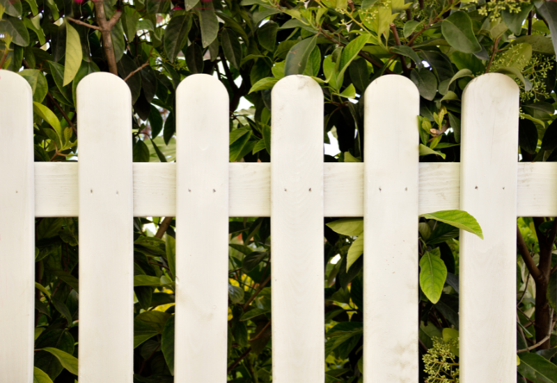 Backyard Updates Homebuyers are Looking For - fencing