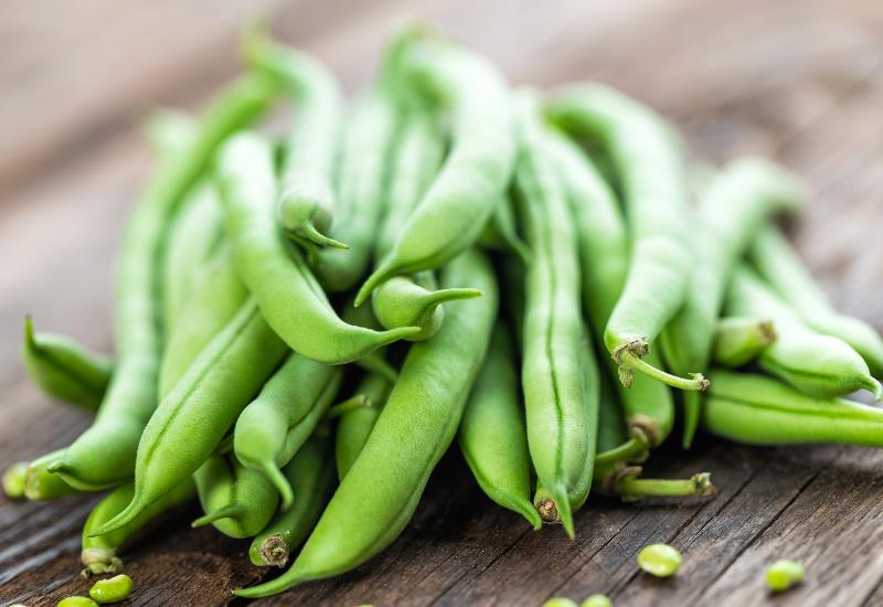 gardening beans